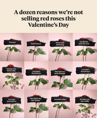 bloom & wild Valentine's day marketing campaign